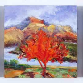 Burning Bush Series